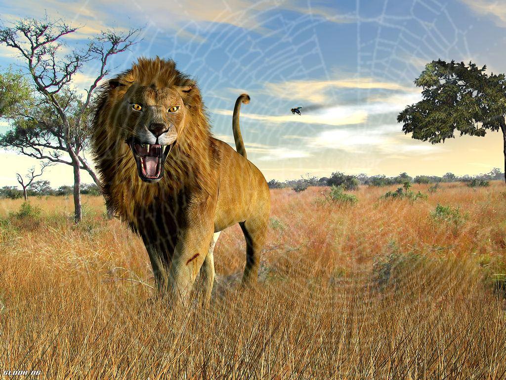Bien-aimé Le lion et le moucheron – jean de la Fontaine – fable | Claude  MG49