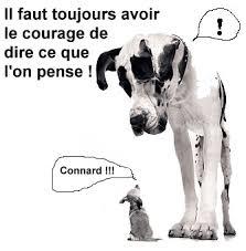 Blague mamie et son chien raciste  Image drôle  Société