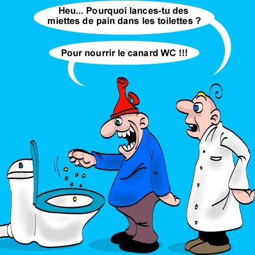 humour-canard